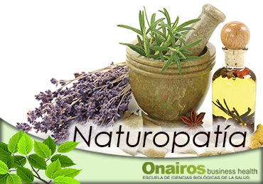 Fitoterapia Plantas medicinales